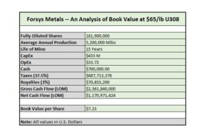 Forsys Metals Book Value